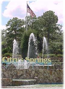 Citrus Springs Fountain
